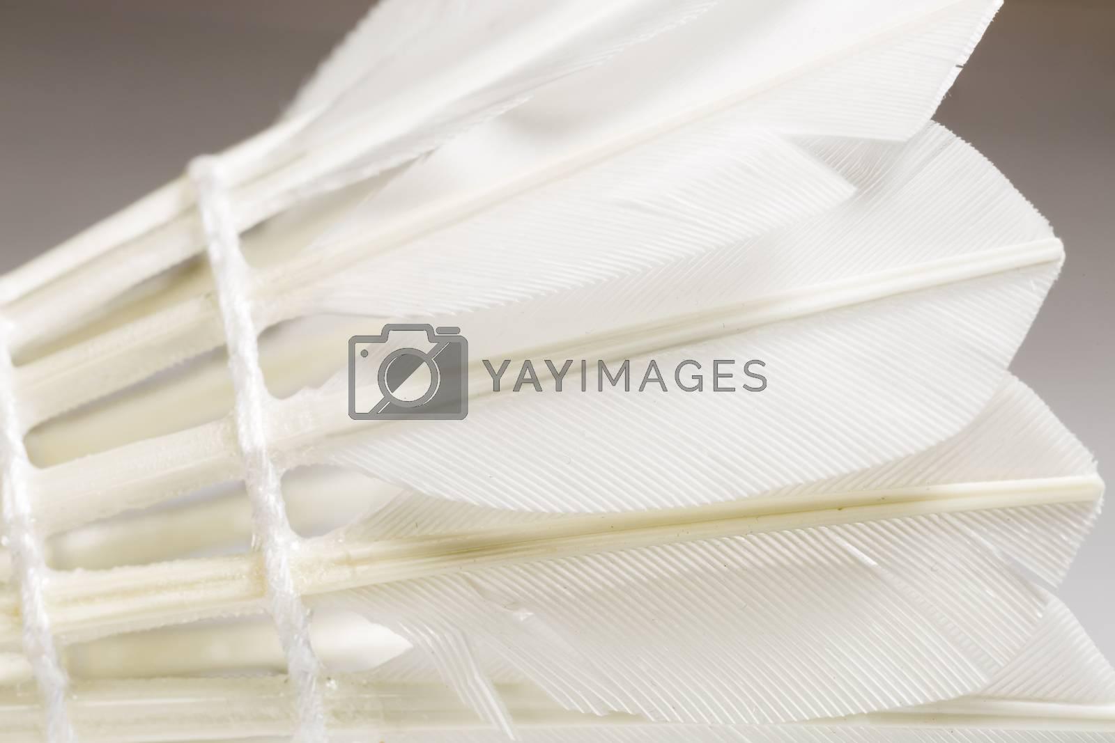 Feathered White Shuttlecock. Macro image.
