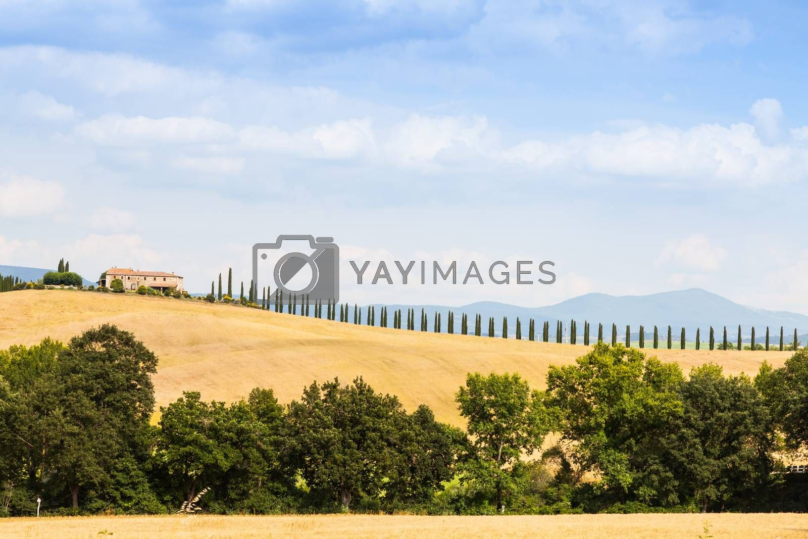 Countryside in Tuscany by Perseomedusa