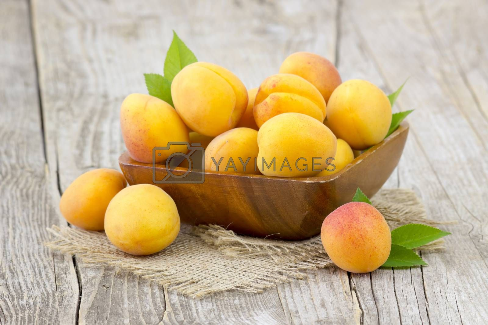 fresh apricots in a bowl on wooden background