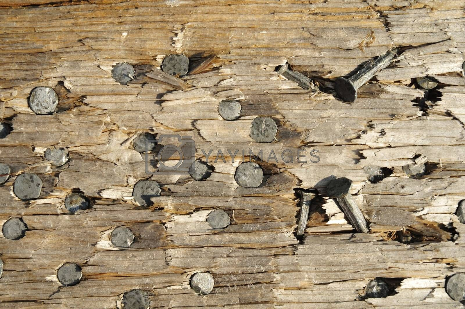 Close up image of nail heads in a plank.