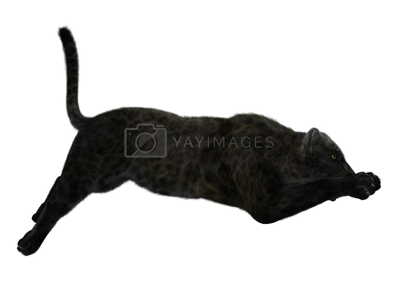 3D digital render of a big cat jaguar hunting iisolated on white background