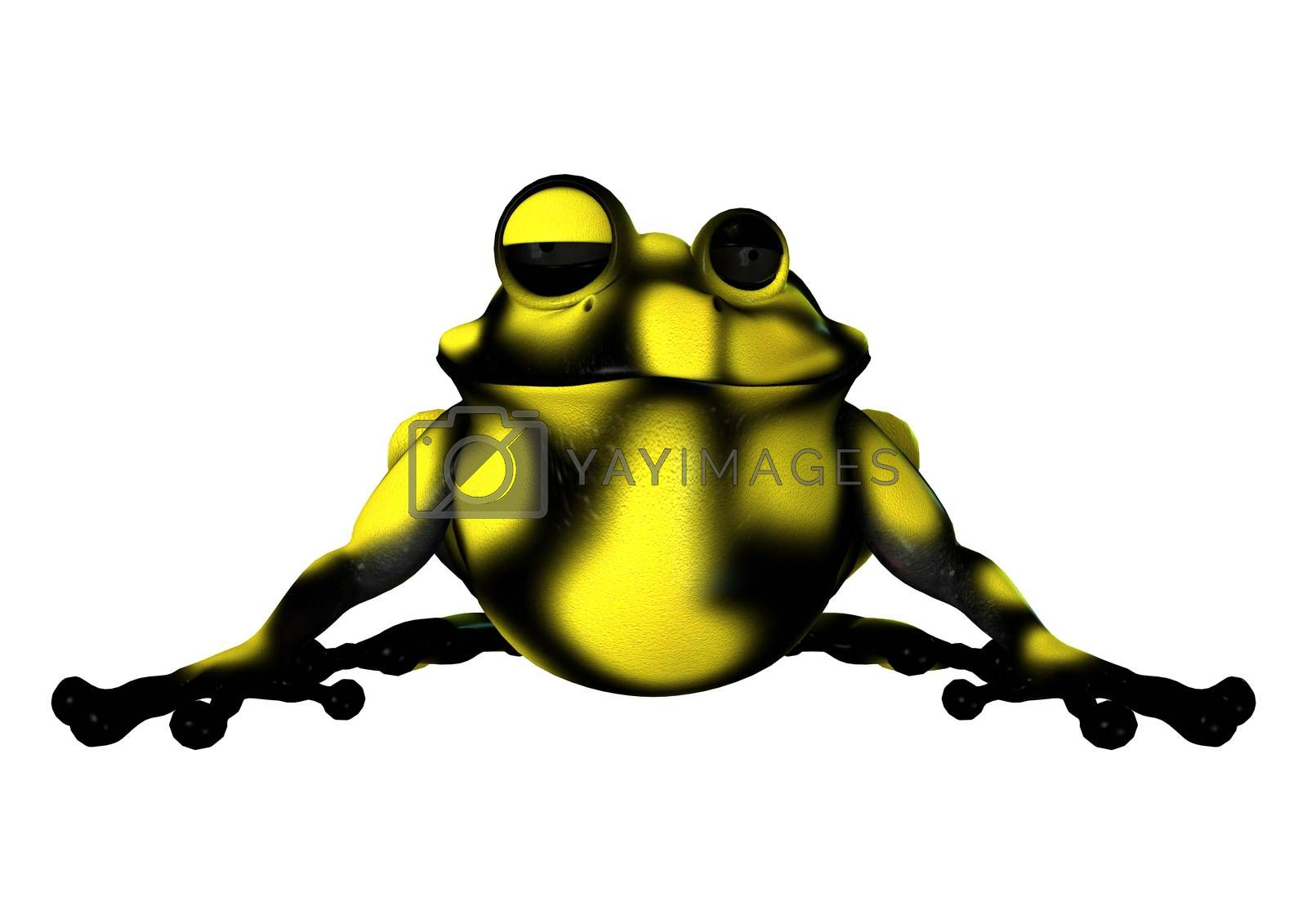 Yellow Frog by Vac
