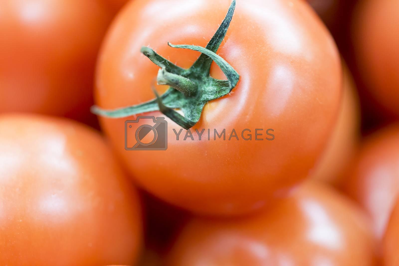 Tomato Close Up. Macro Image.