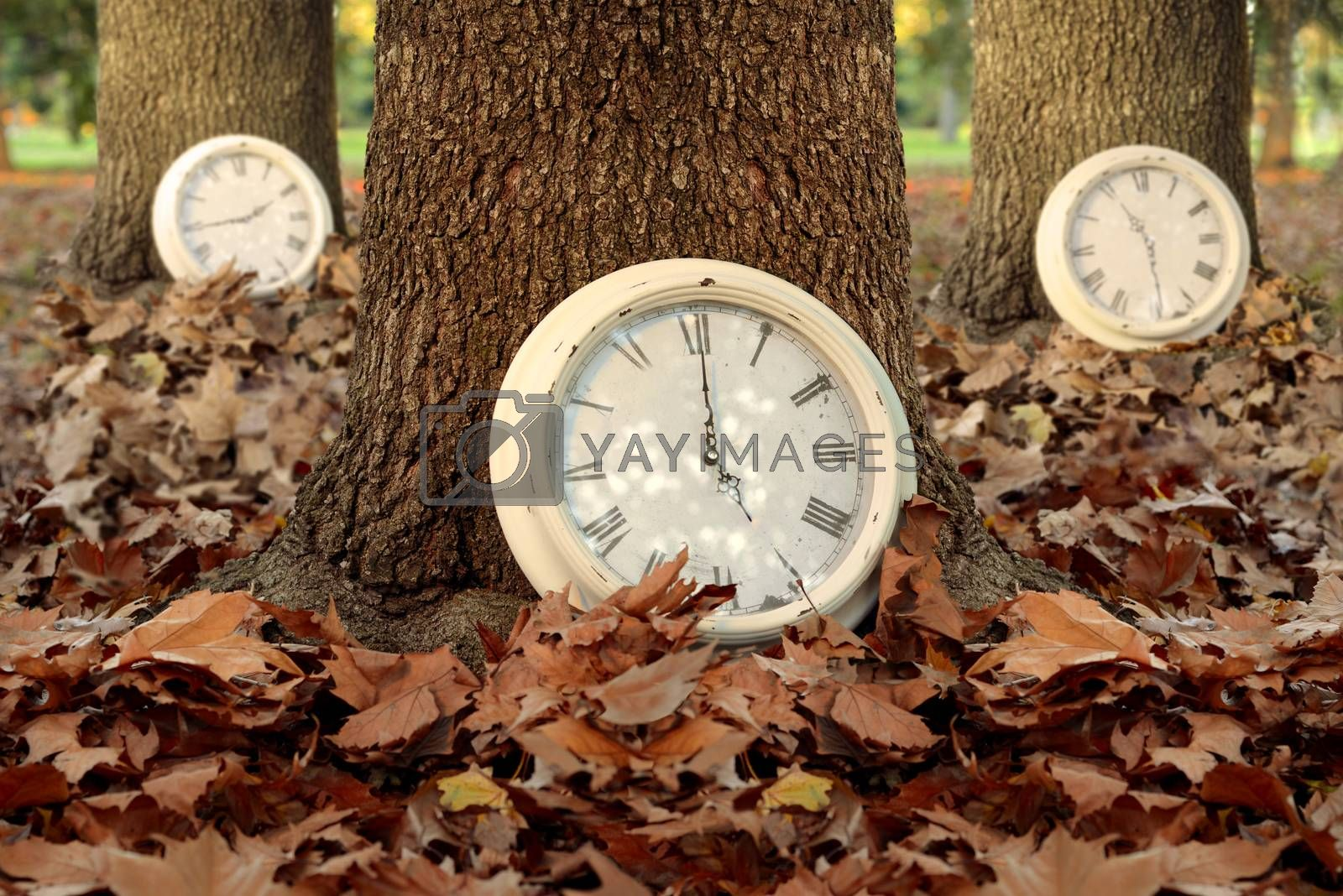Fall time creative concept with clocks and trees on autumn leaf ground forest background. Ideal for season campaign, book cover or poster.