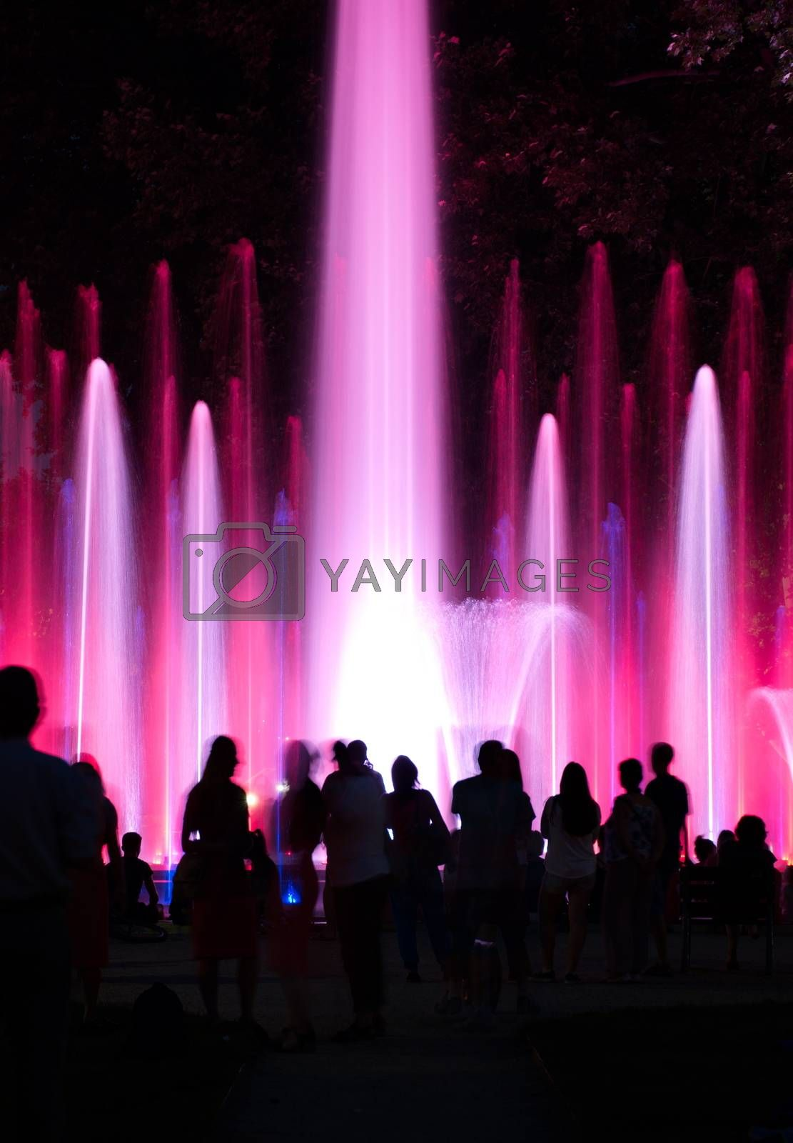 Royalty free image of People wondering colourful fountain in Budapest, Hungary by anderm