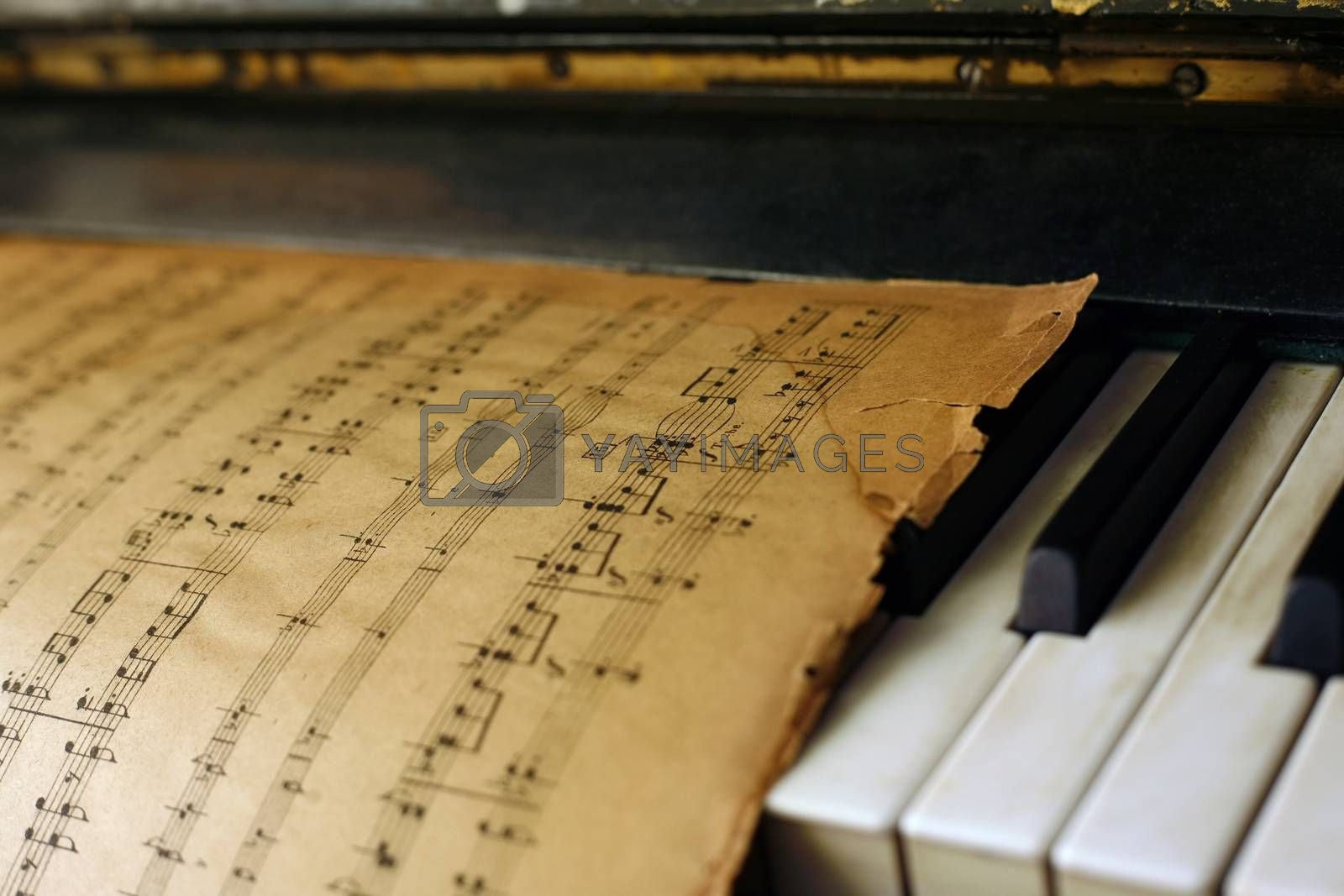 Piano and old notes by friday