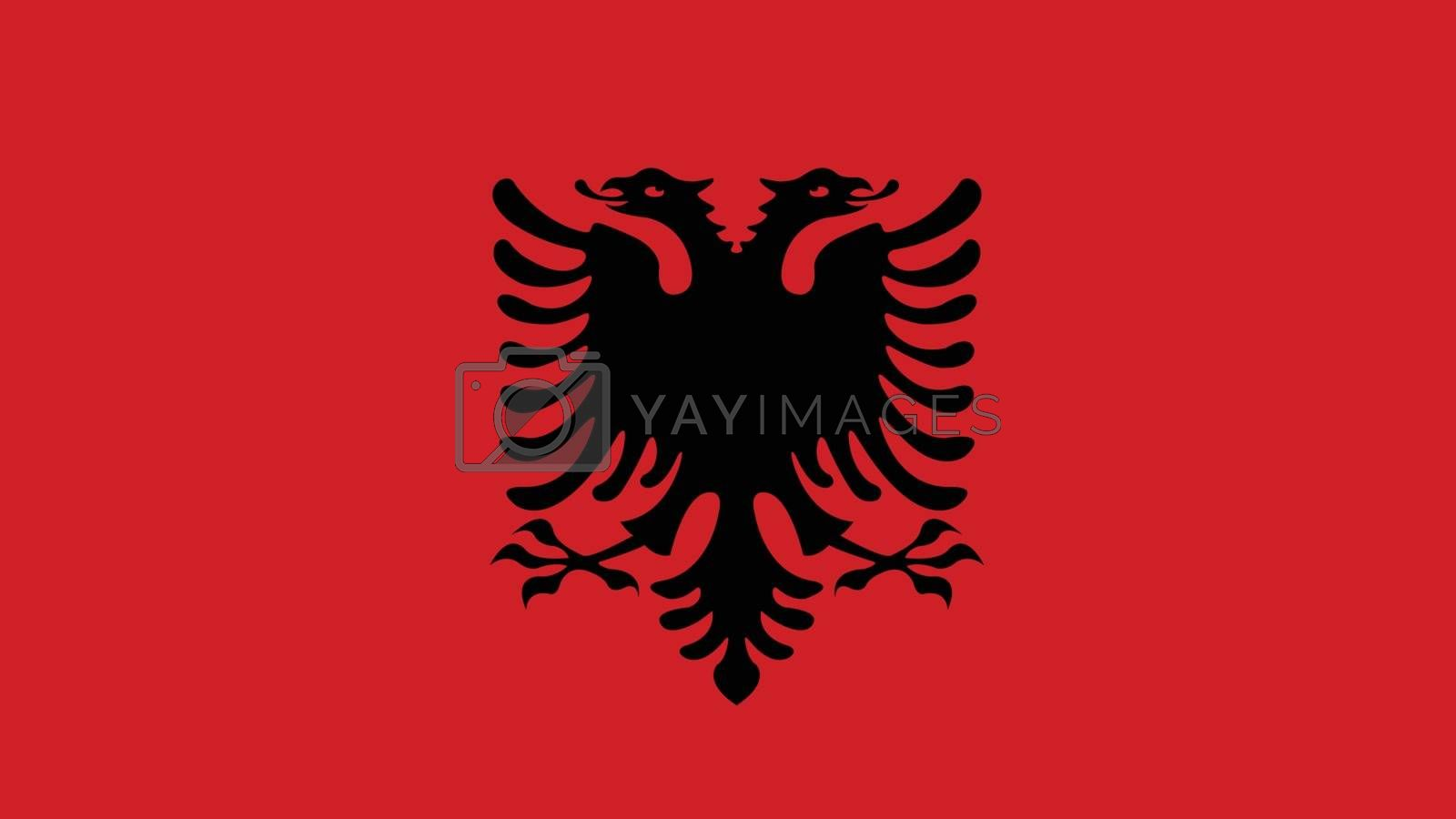 albania Flag for Independence Day and infographic Vector illustration.