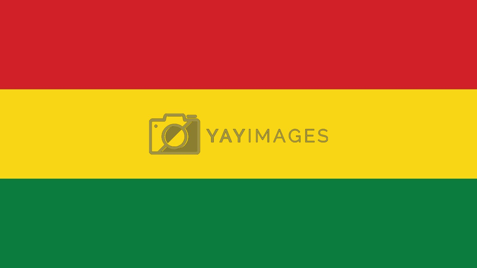 bolivia Flag for Independence Day and infographic Vector illustration.