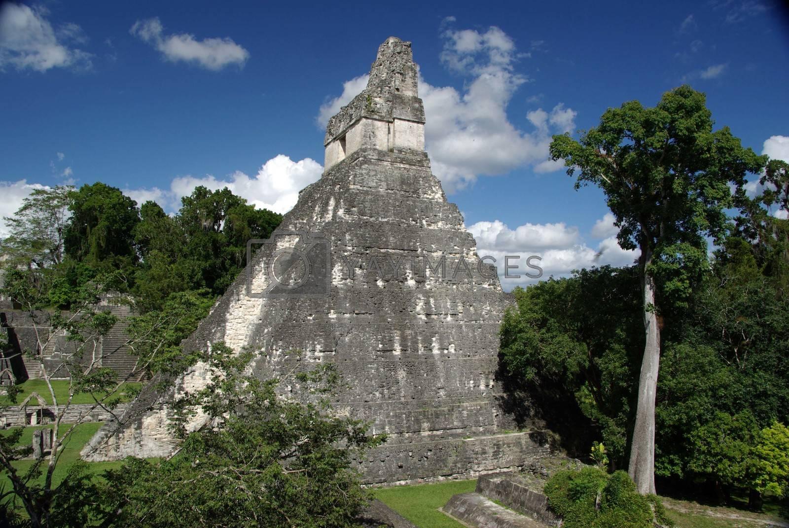 Mayan pyramid in the Mayan ruins of Tikal in Guatemala, Central America