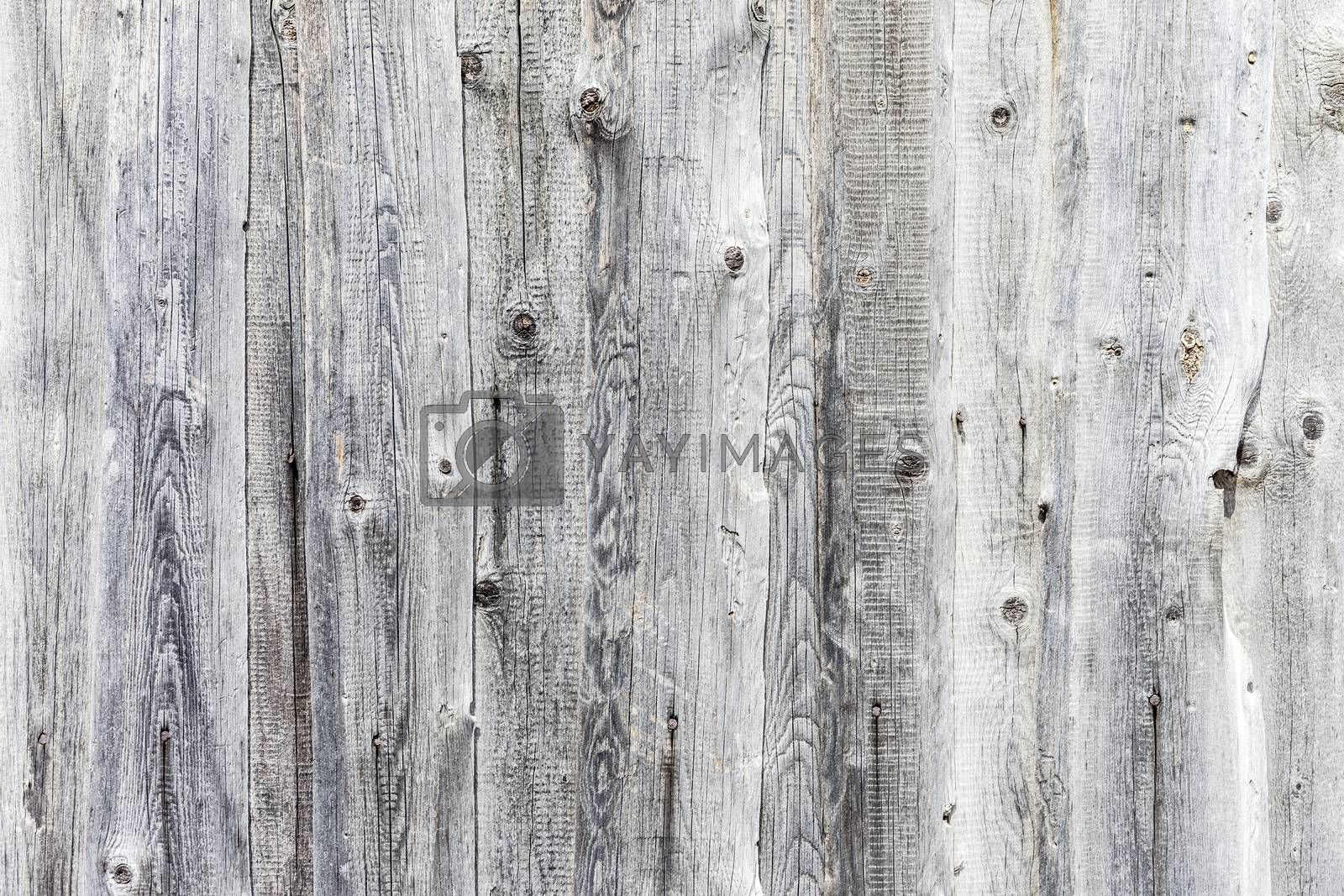 the vintage high resolution white wood backgrounds