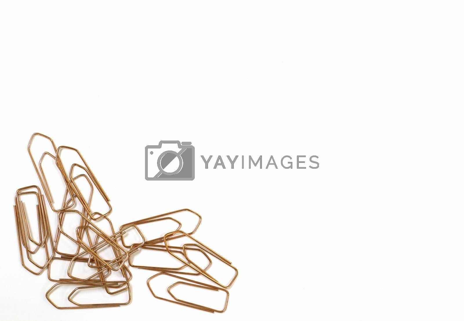 Close-up of paper clips on a white background.