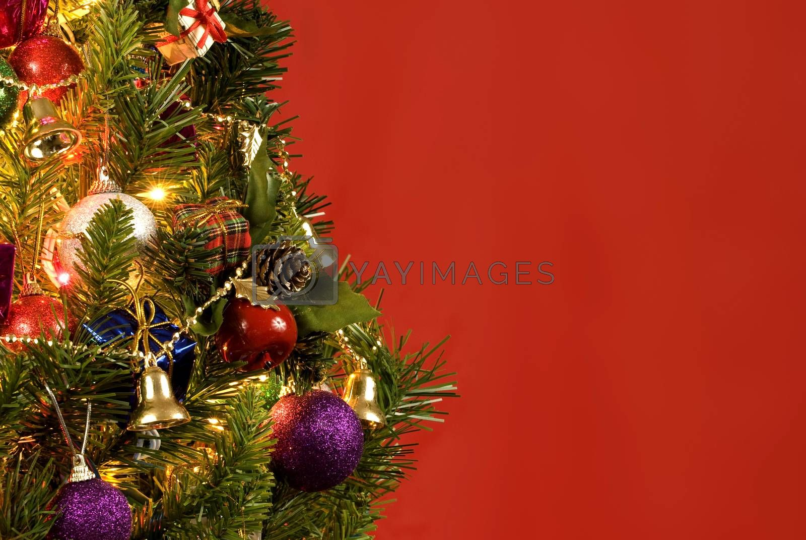 Horizontal shot of a beautiful little Christmas tree on a red background with lots of copy space.