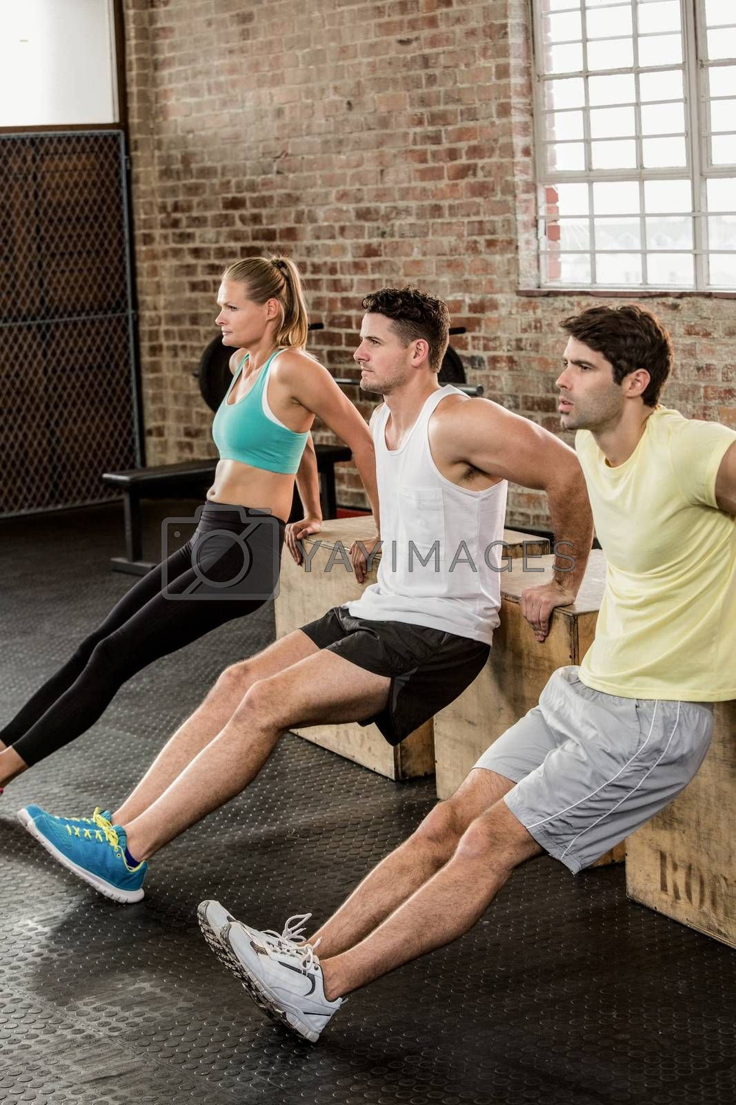 People holding ply box and exercising