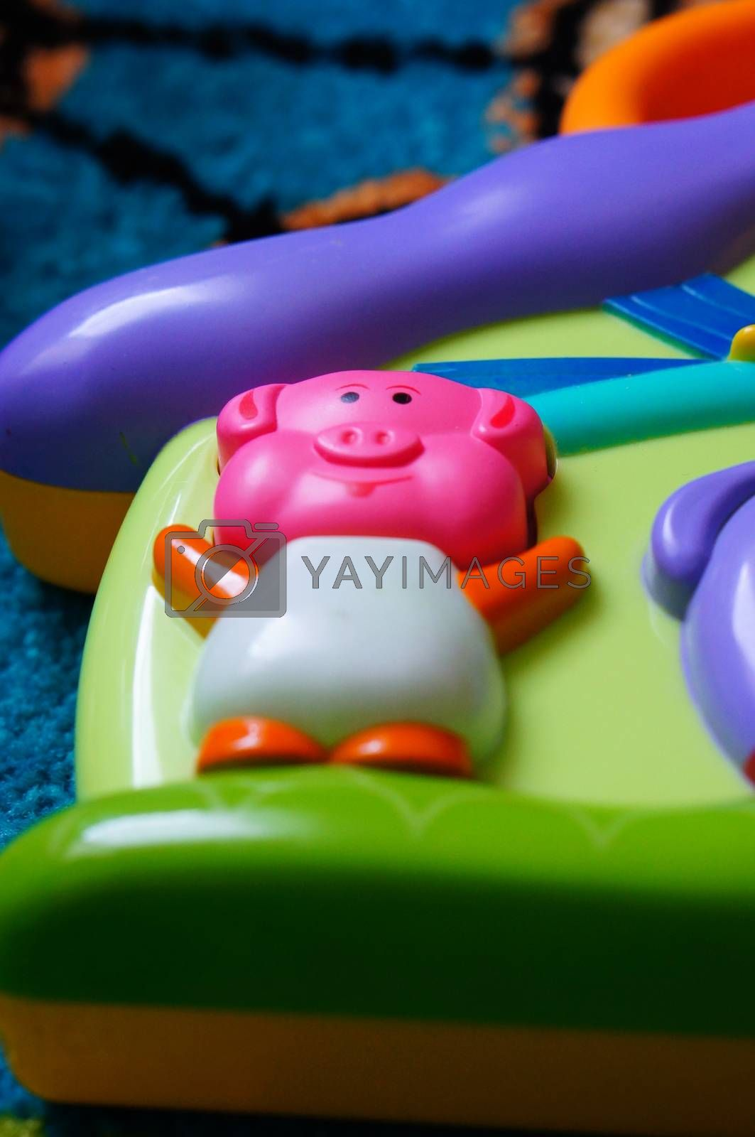 Pig button of a baby sound toy