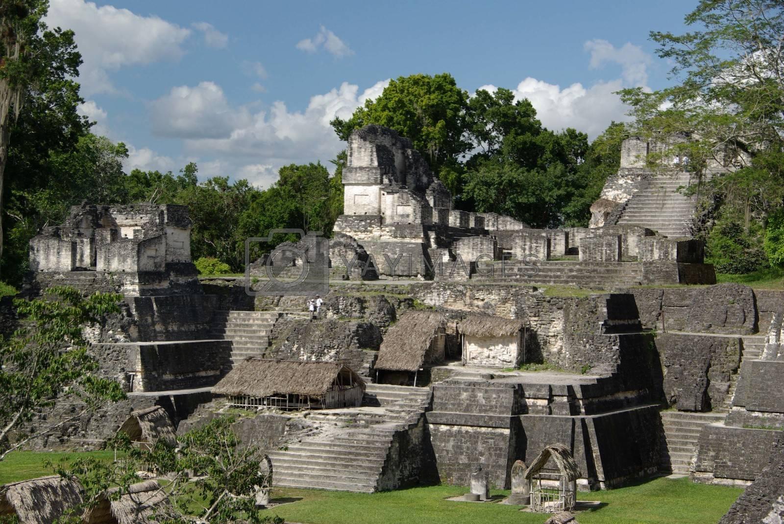 Mayan pyramids in the Mayan ruins of Tikal in Guatemala, Central America