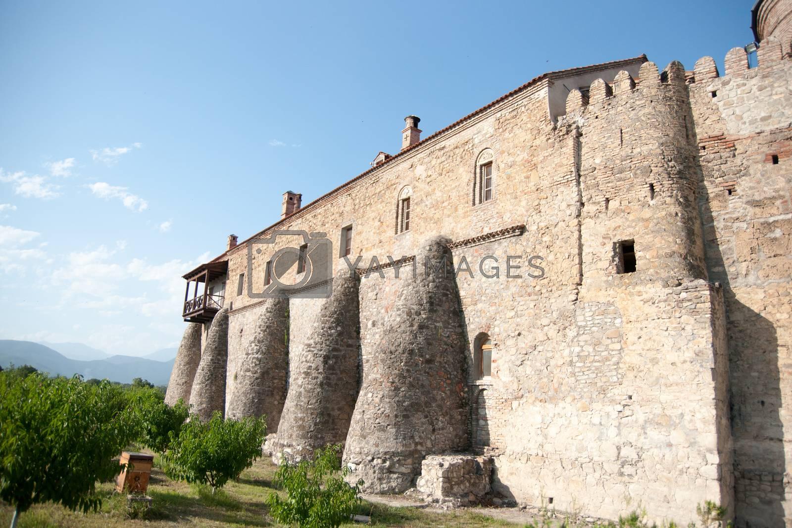 Summer travel in georgia Kahetia region