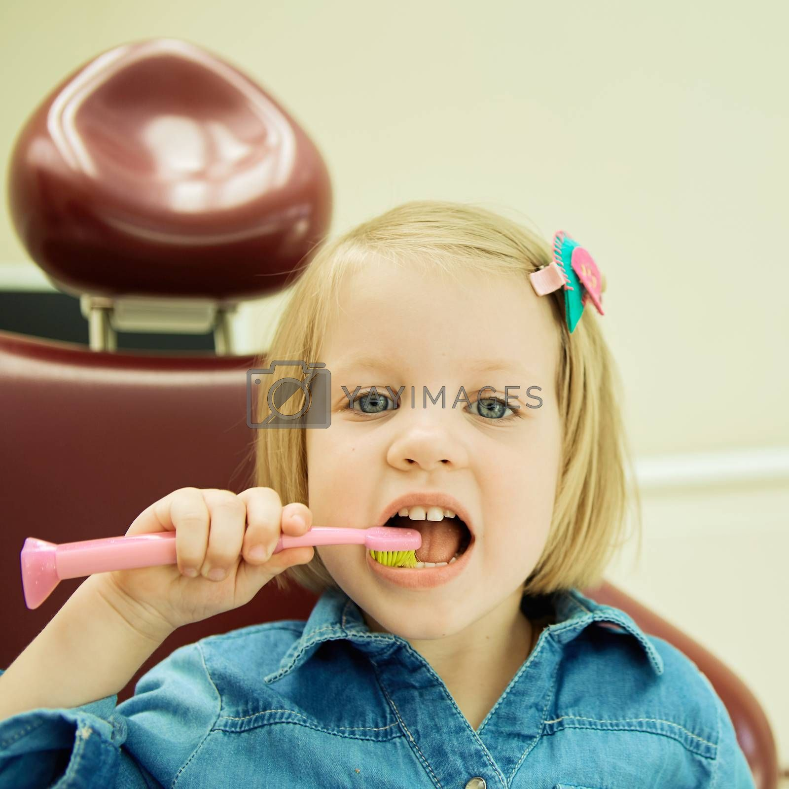 Little girl sitting in the dentists office brushes teeth