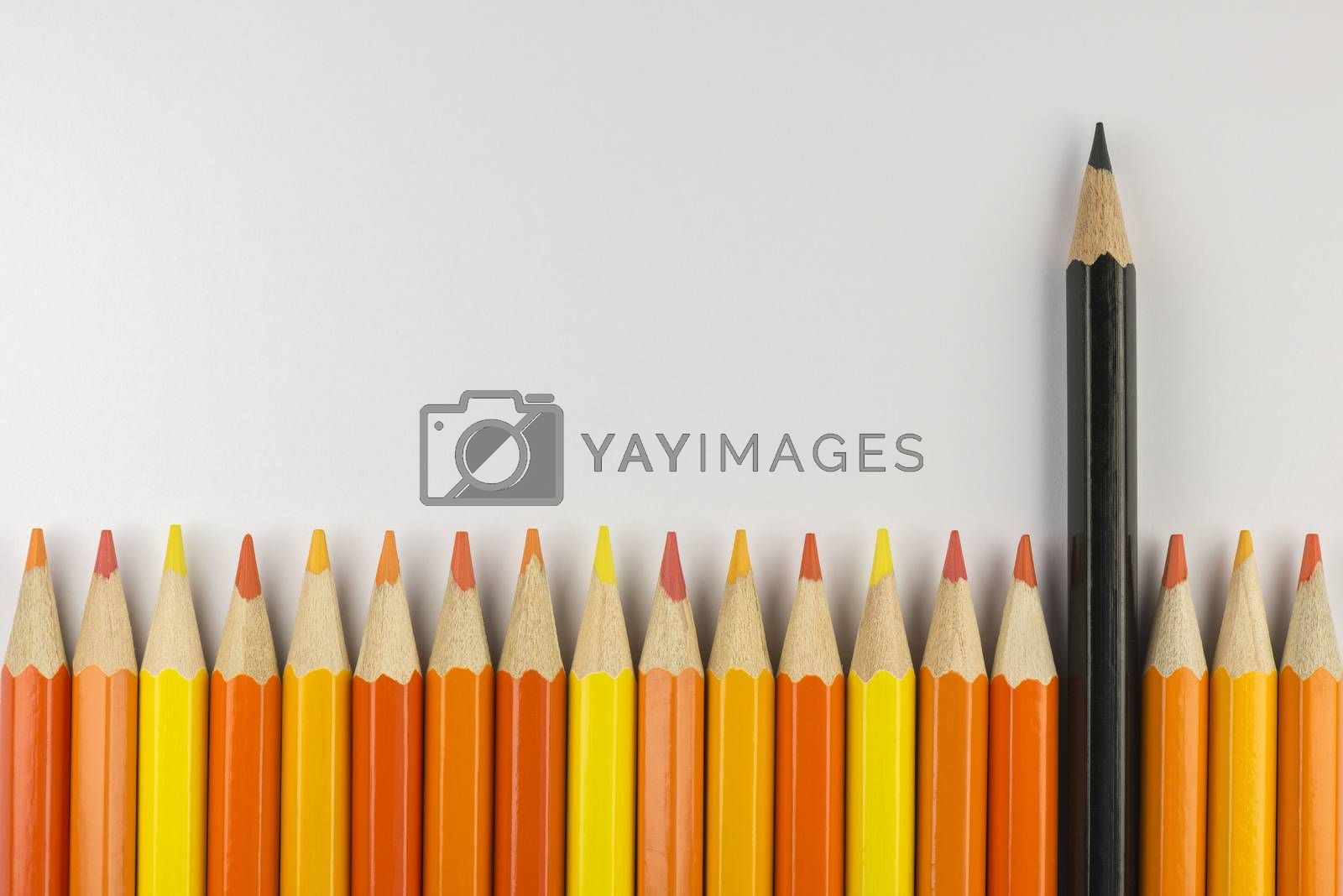 Abstract composition of a set wooden colour pencils against a white background