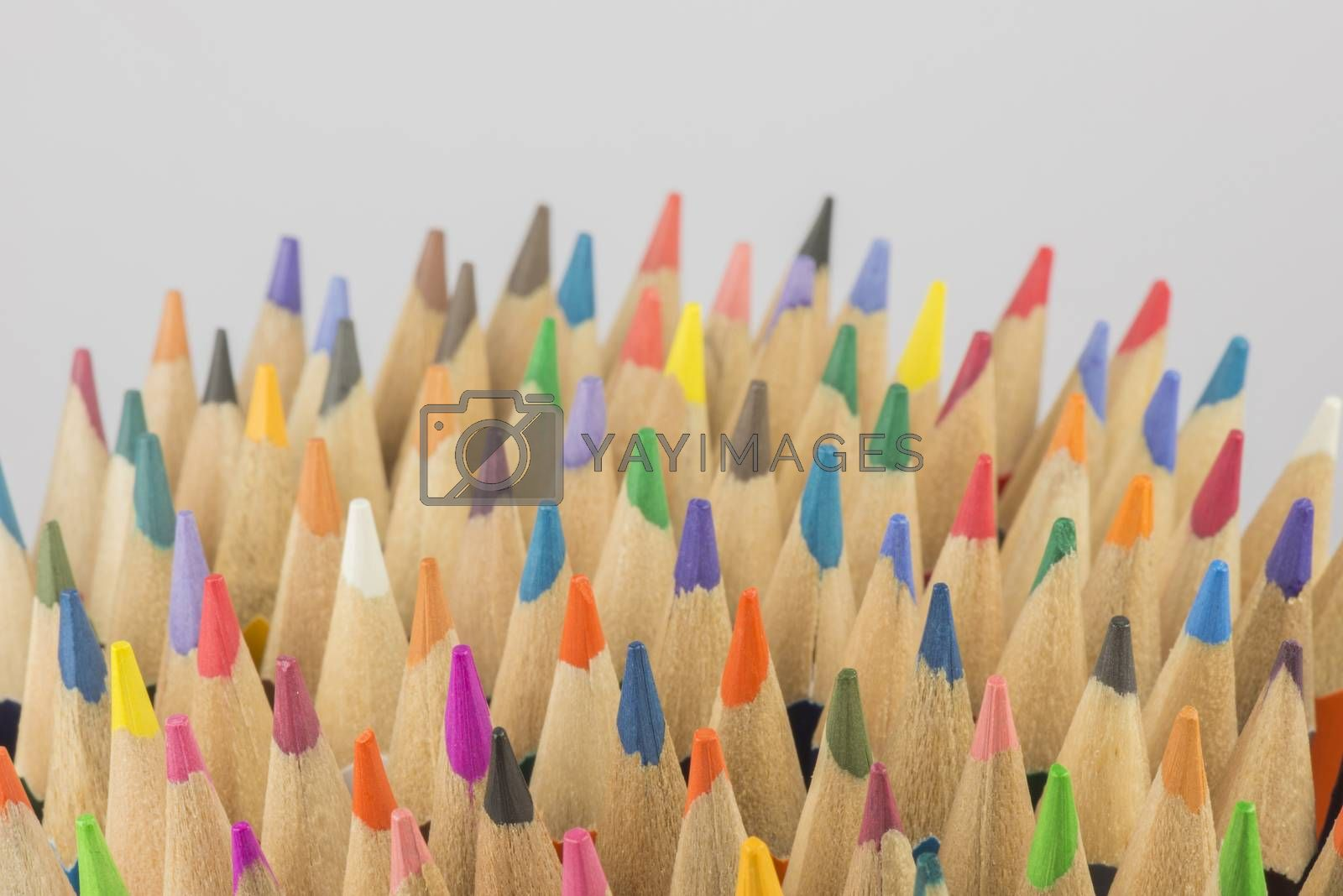 collection of colored wooden pencils  by Tofotografie