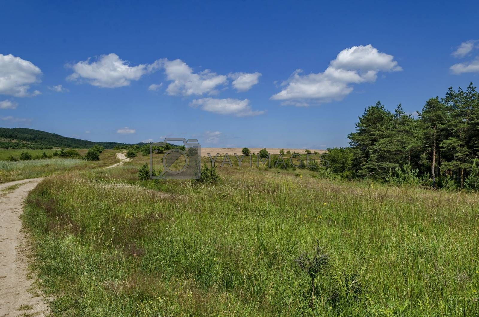 Background of sky, clouds, field,  road  and forest, Plana mountain, Bulgaria