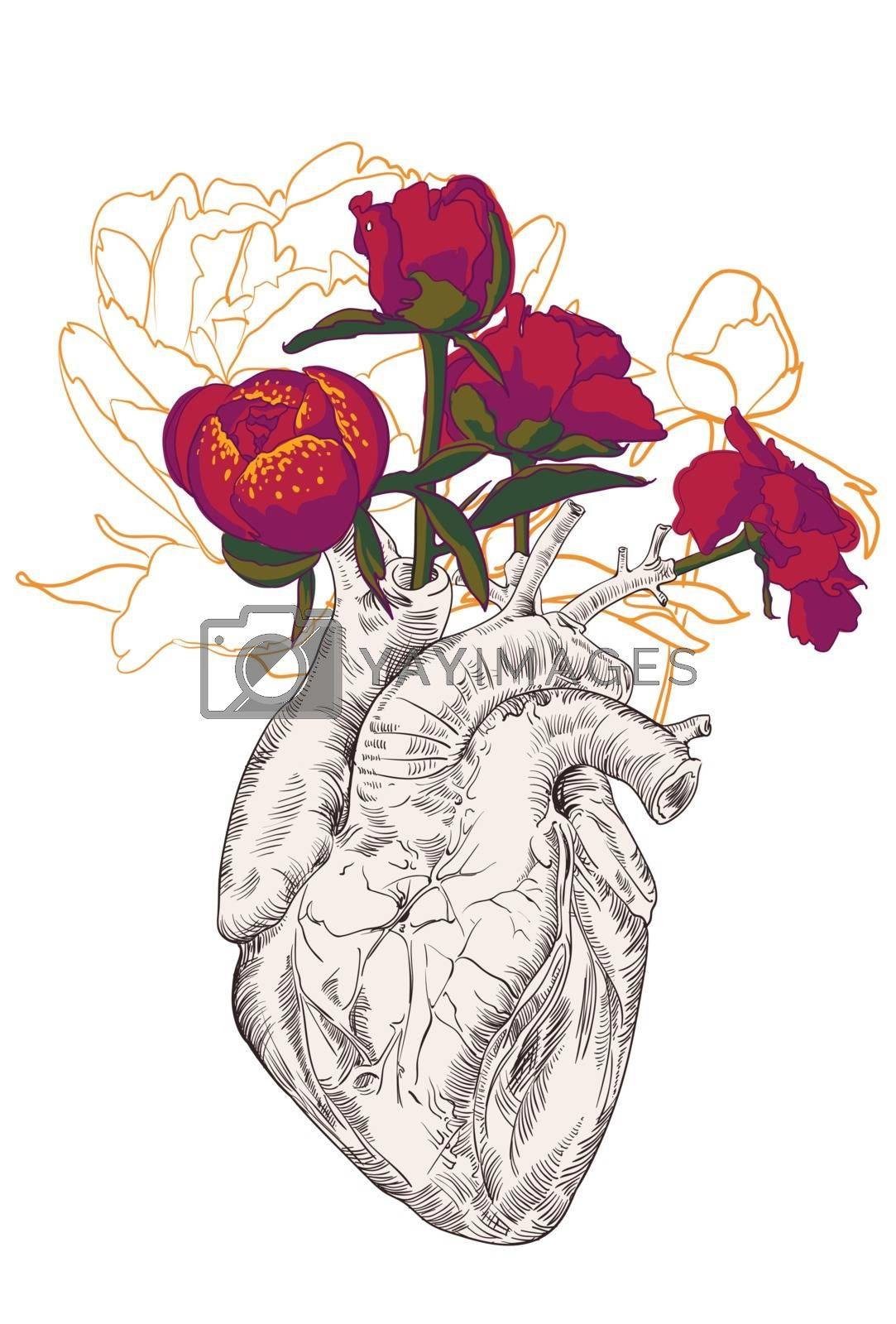drawing Human heart with flowers background. vector
