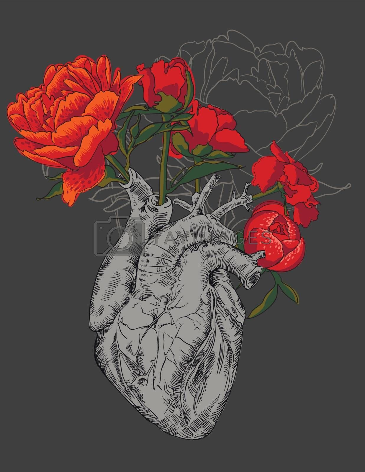 Drawing Human Heart With Flowers Royalty Free Stock Image Stock Photos Royalty Free Images Vectors Footage Yayimages