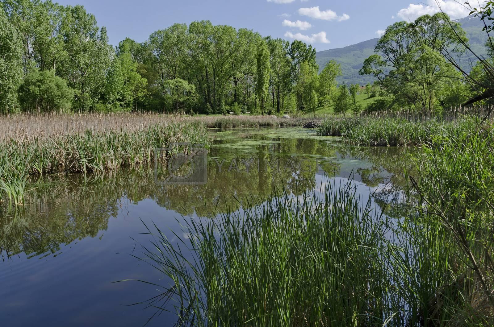Small dam in the beautiful South park, Sofia, Bulgaria