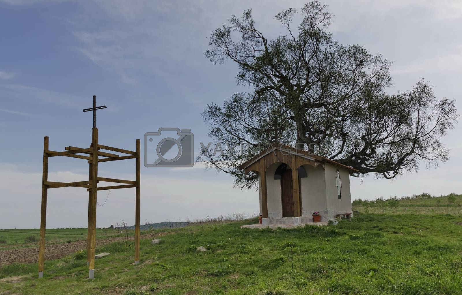 Chapel and old tree in Plana mountain