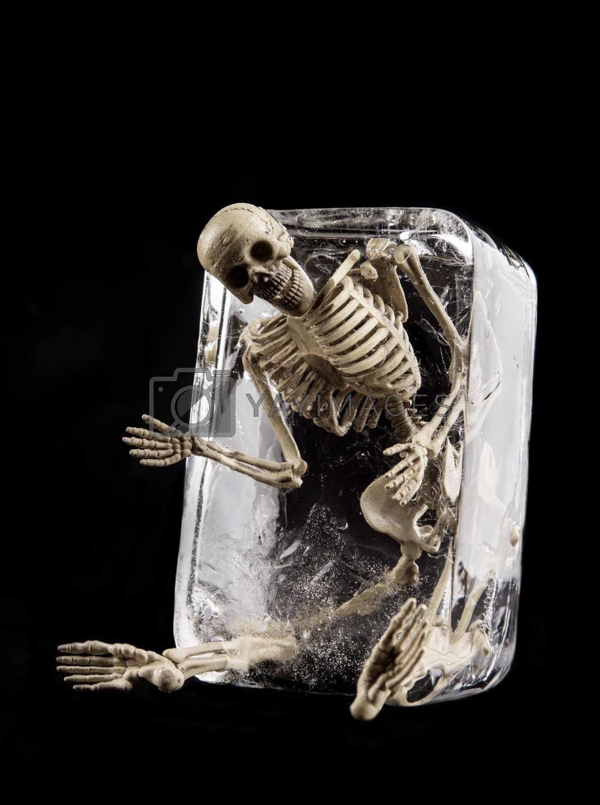 Death in ice concept, Skull in ice isolated on black background