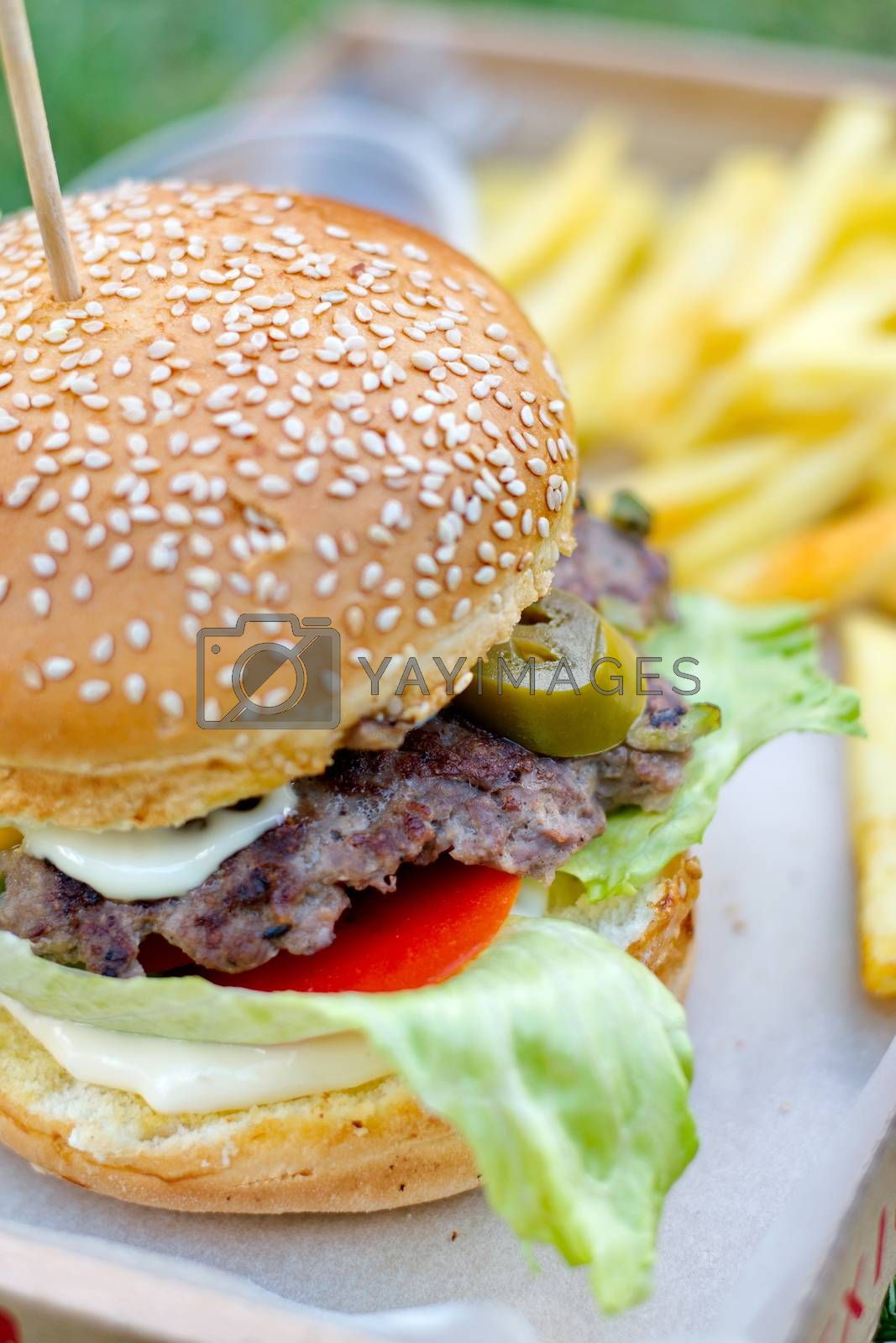 Juicy hamburger