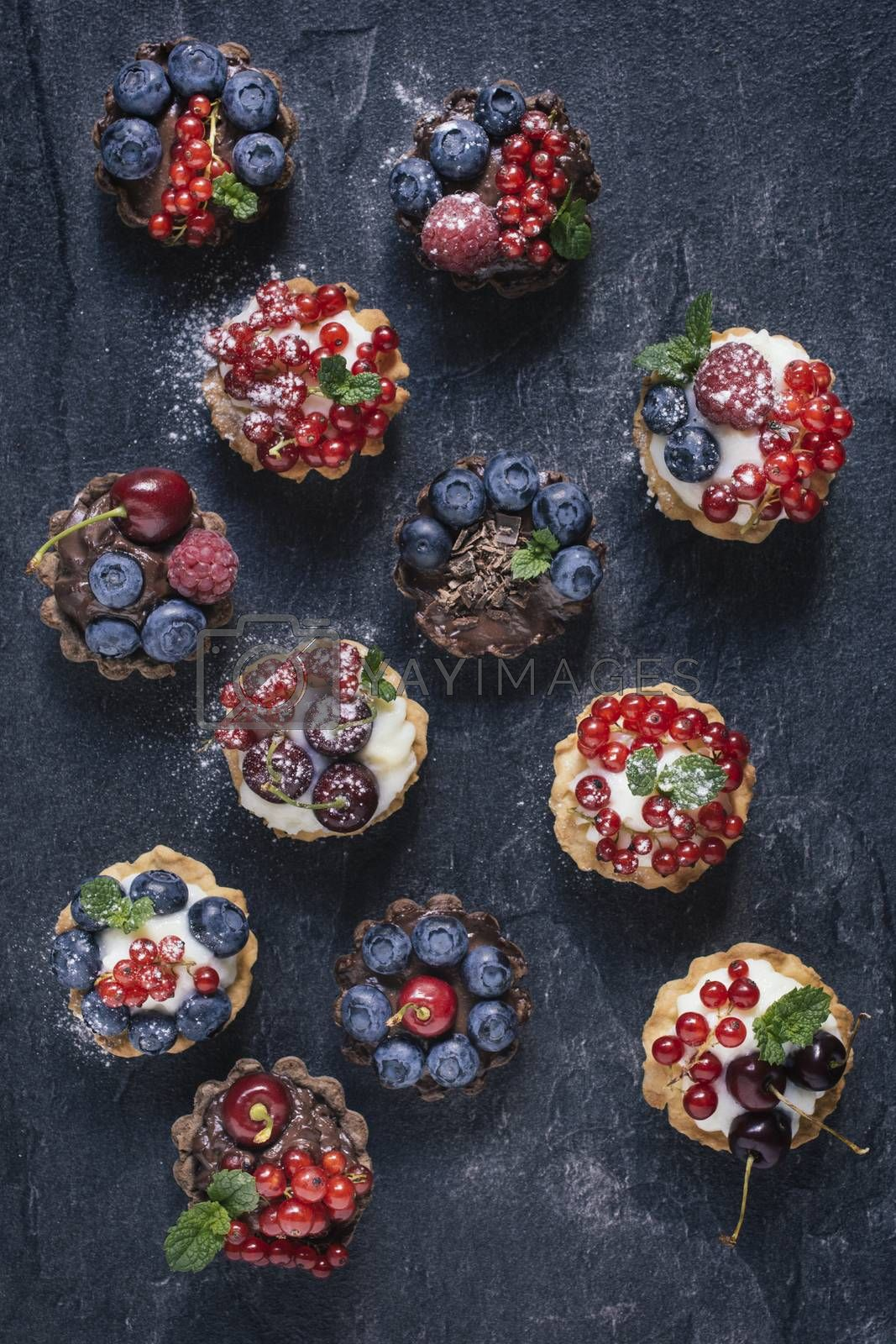 Vanilla and chocolate pudding in mini tarts with berry fruits from above