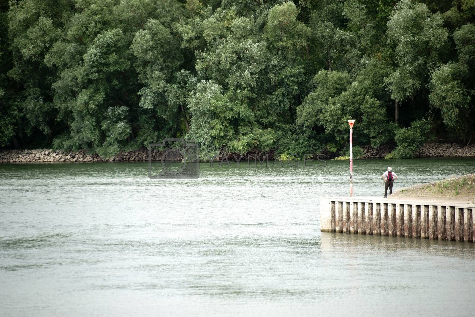 A hiker looks on the waters of the river Rhine and seems to be small in contrast to the surrounding.