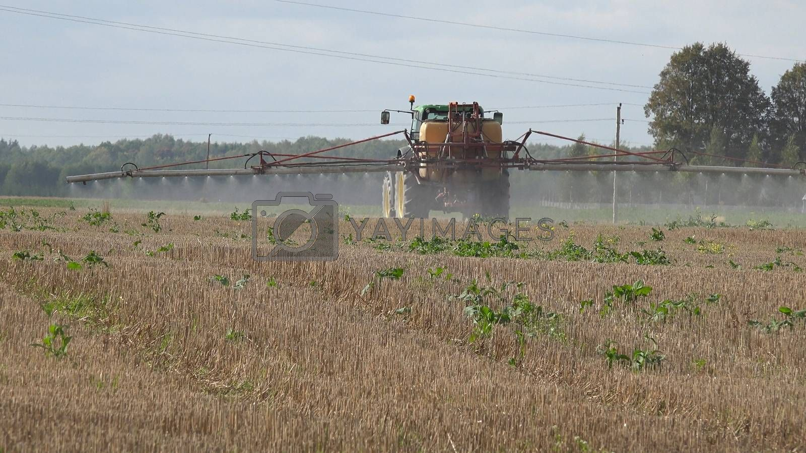 Tractor spray stubble field with herbicide chemicals in autumn. Farmer killing weeds in agriculture field before winter.