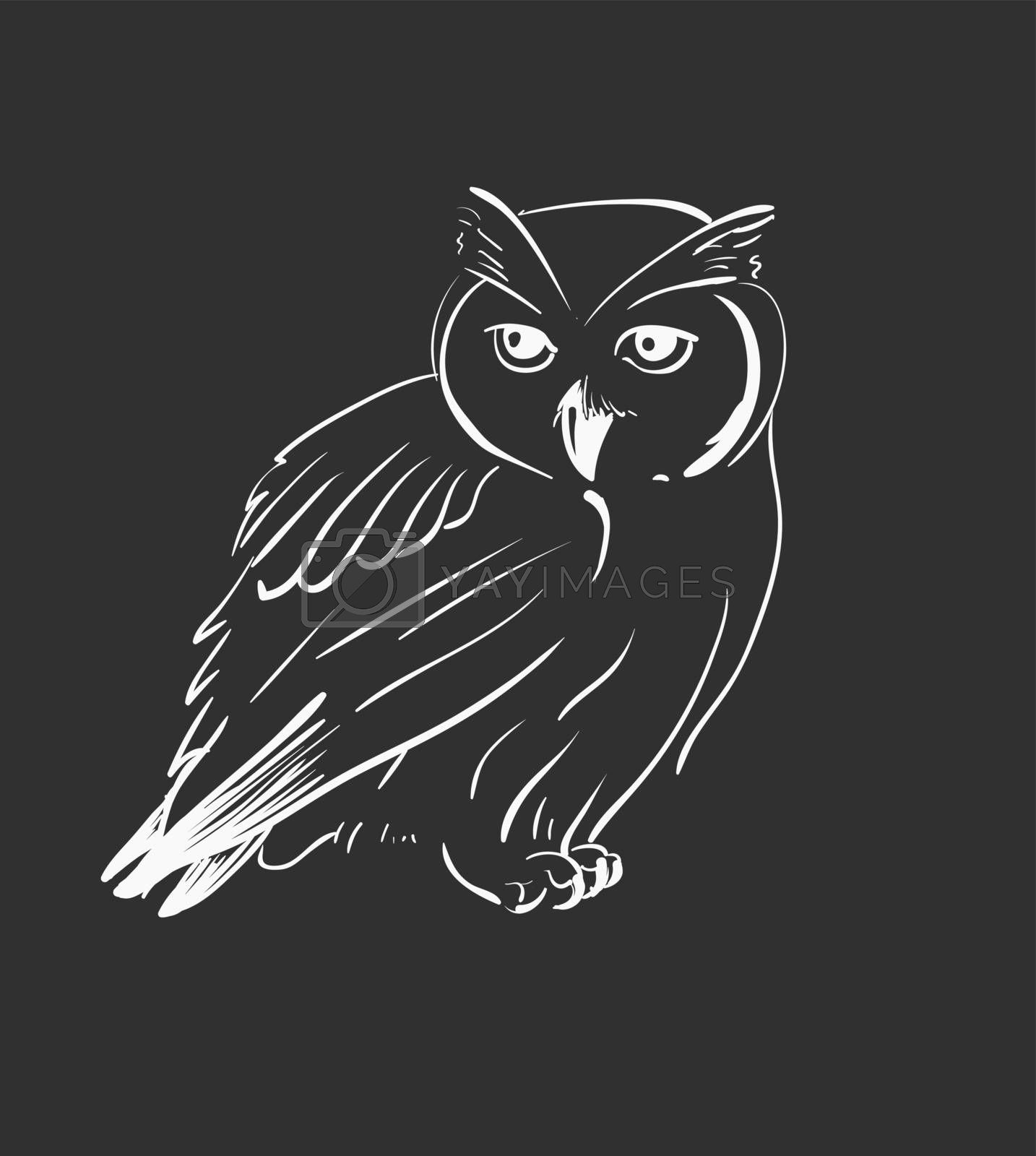 Owl hand drawn, black and white by OlgaBerlet