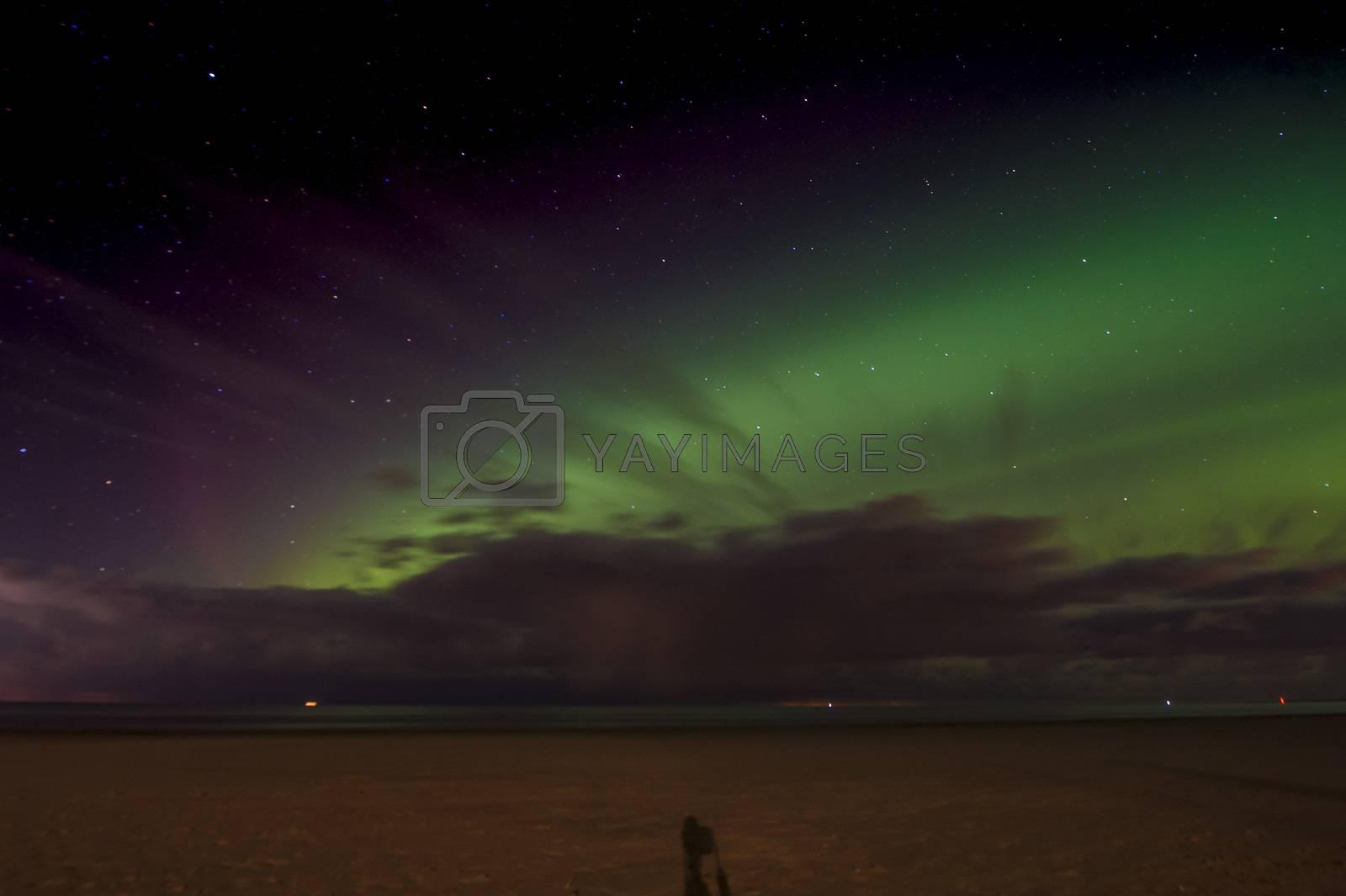 ESTONIA - ASTRONOMY - AURORA by newzulu