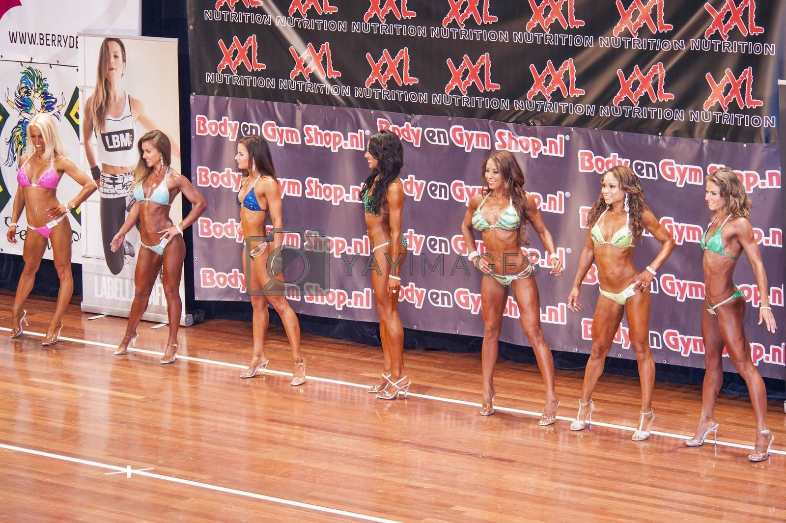 Female fitness models show their best side in a lineup by yellowpaul