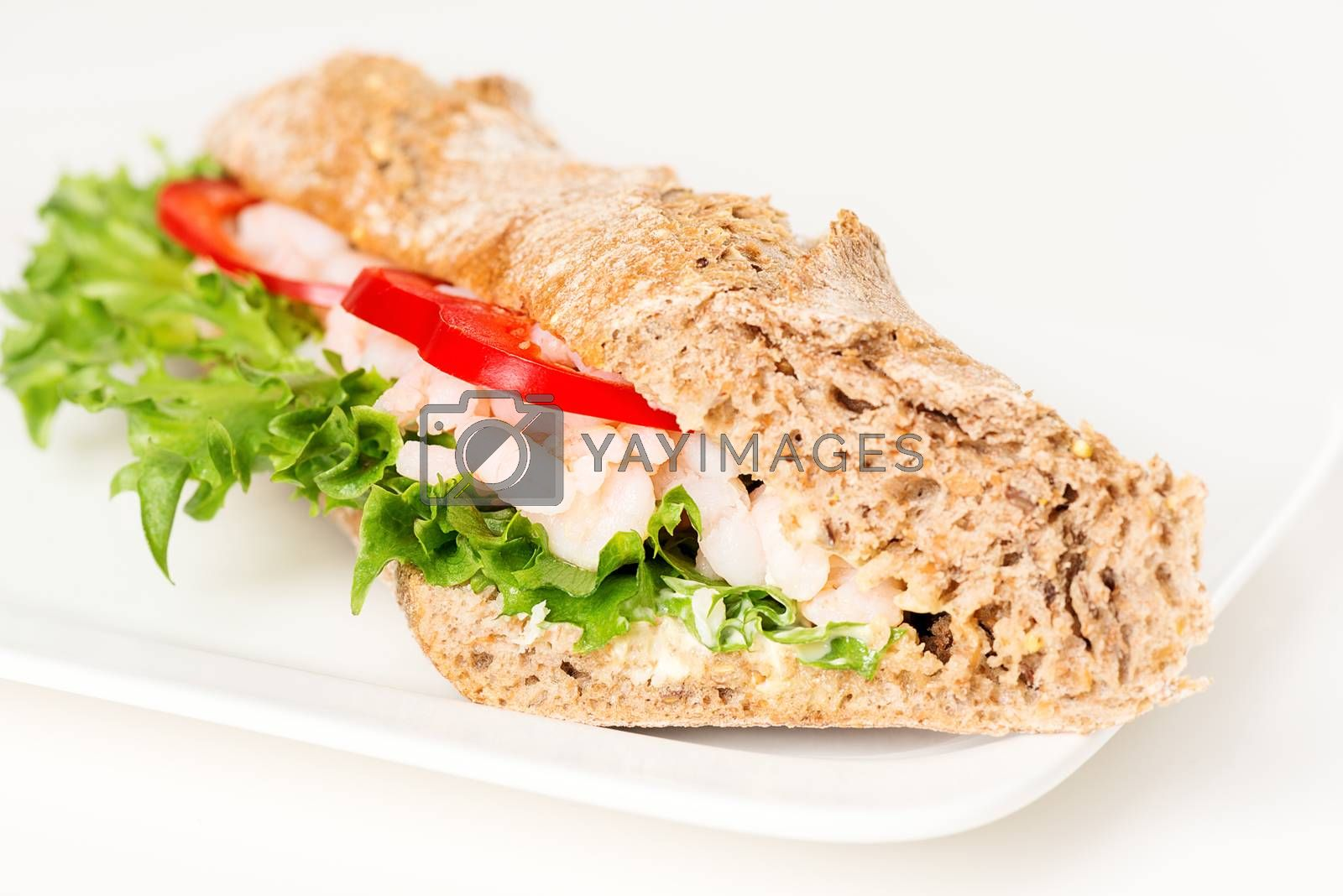 Prawn sandwich on white plate closeup by Nanisimova
