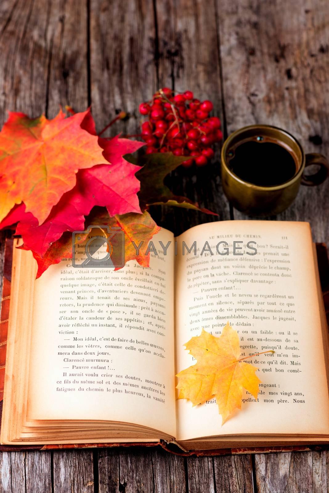 Autumn still life set on wooden table by Nanisimova