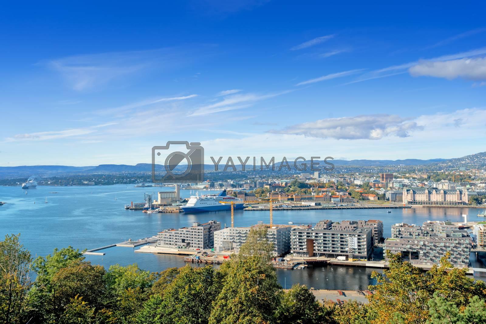 Oslo Norway view by Nanisimova