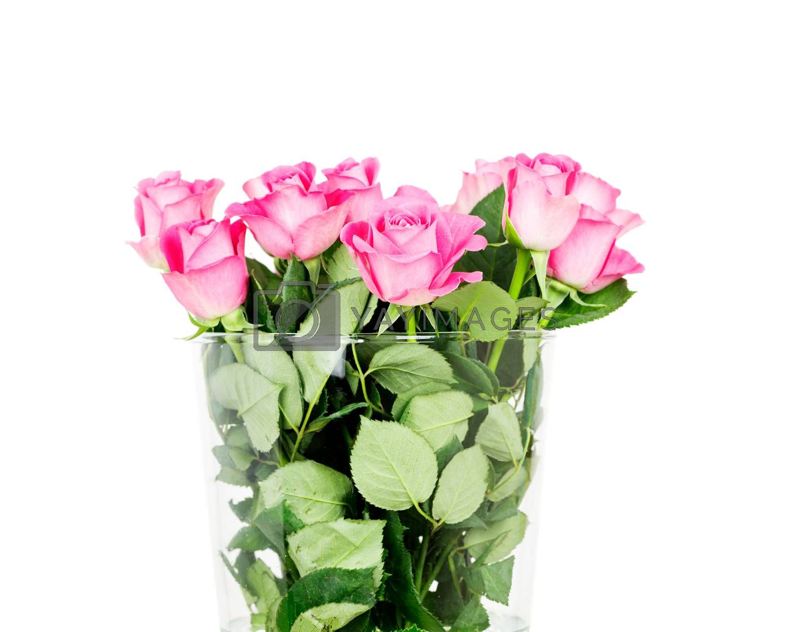 pink roses in vase isolated on white background by Nanisimova