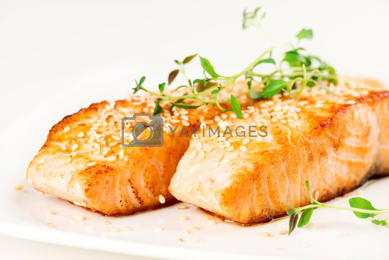 Grilled salmon on white plate by Nanisimova