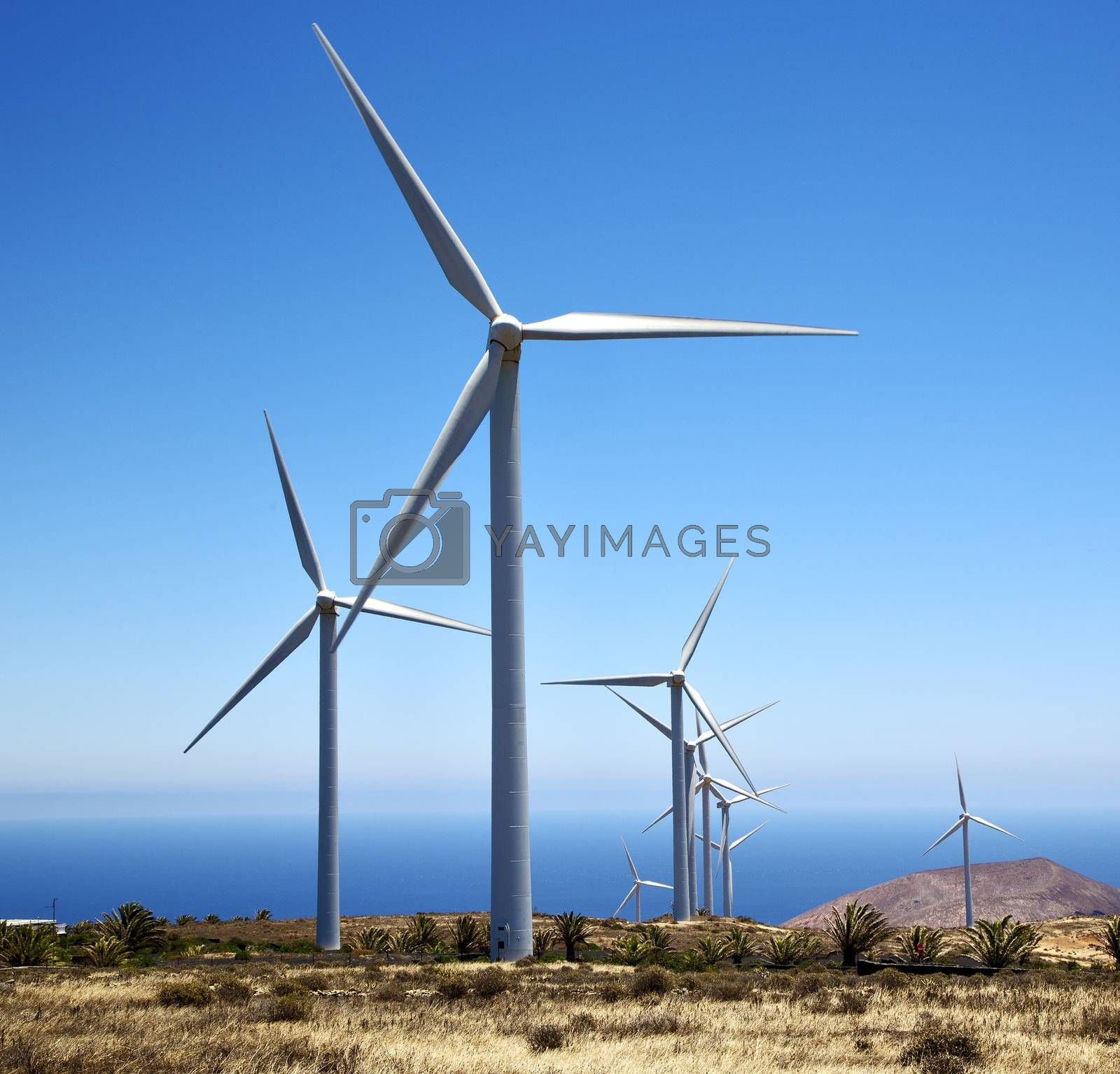 africa winturbines and the sky in  is by lkpro