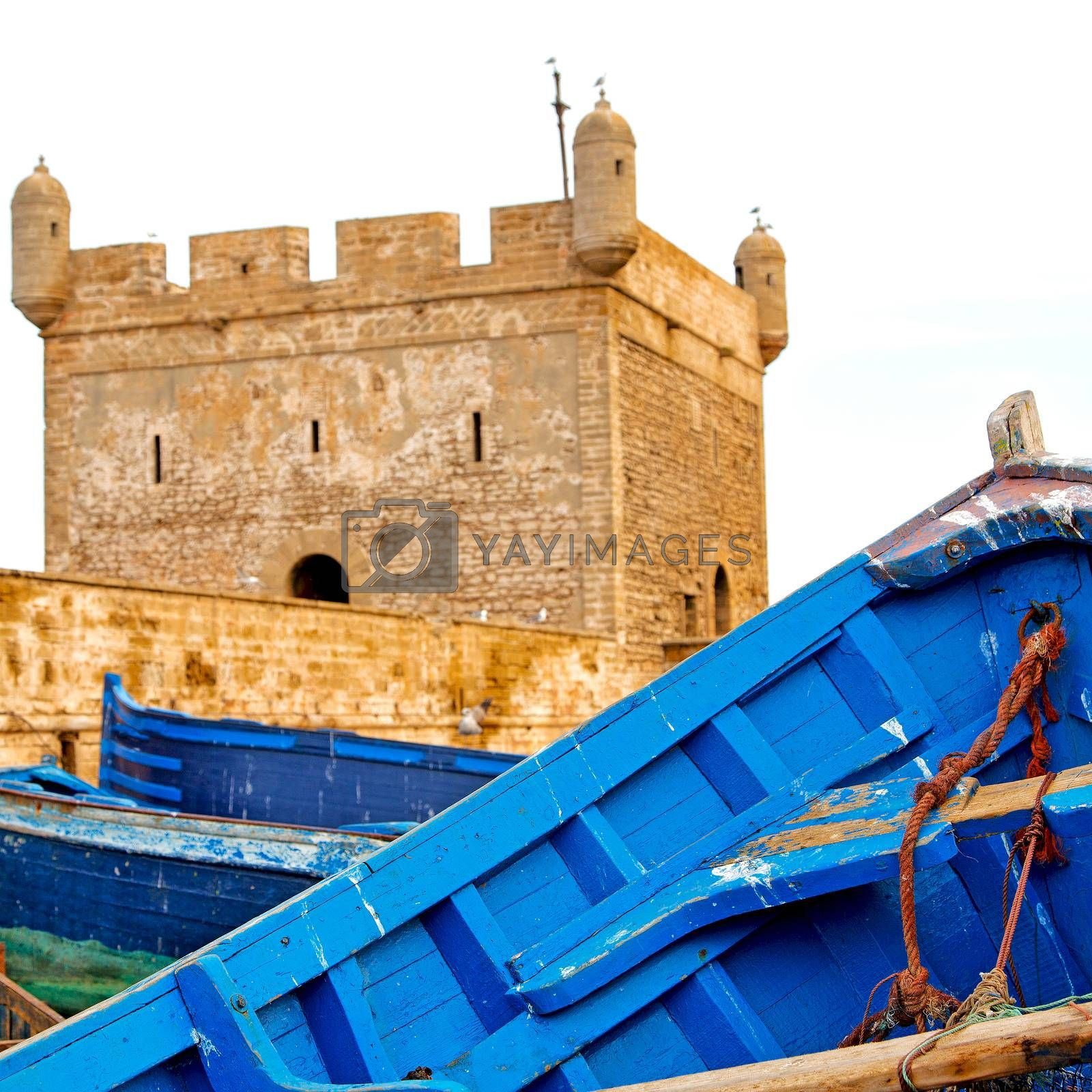 boat and sea in africa morocco old castle brown brick  sky by lkpro