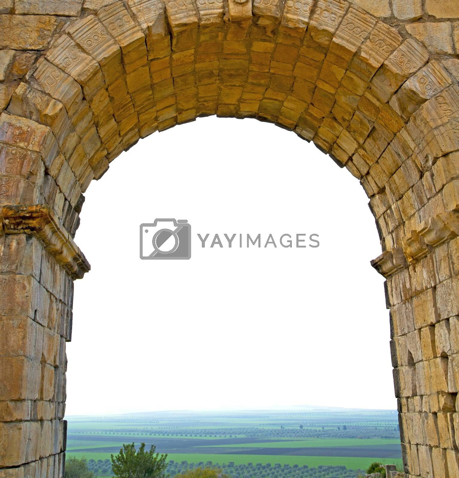 volubilis in morocco africa the old roman deteriorated monument  by lkpro