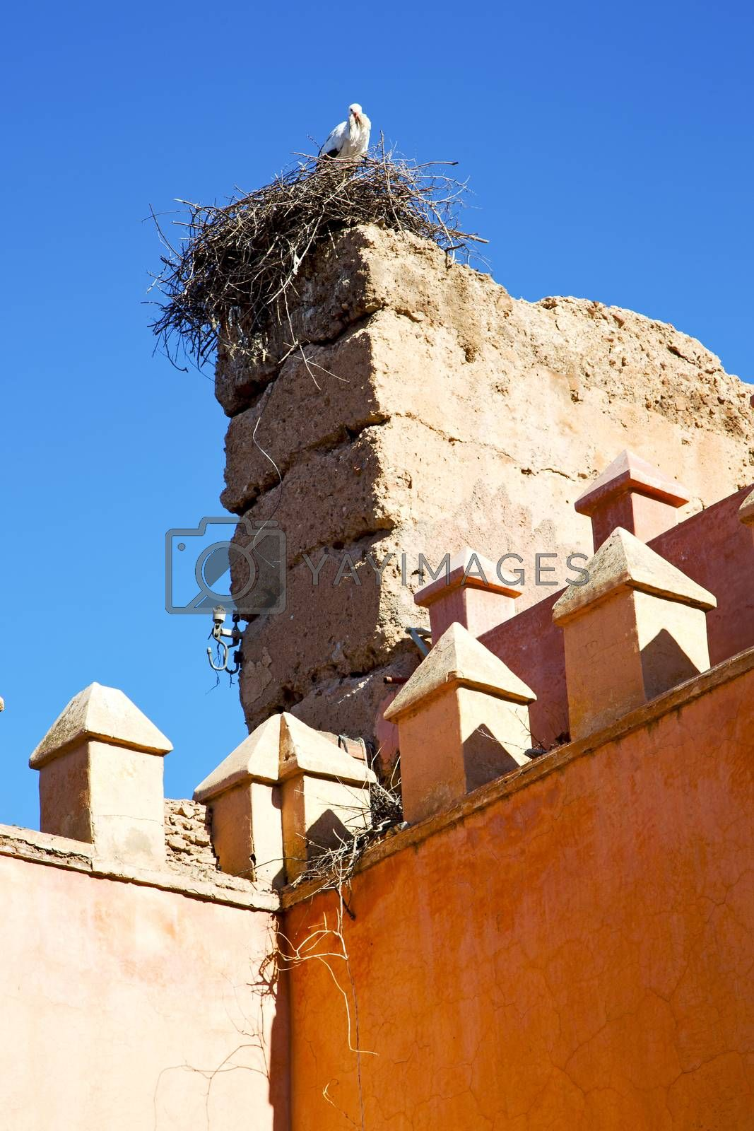 dome    old ruin in     construction  stork by lkpro