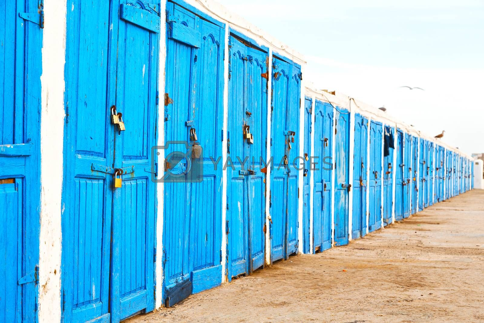 in africa morocco  old harbor wood   door and   by lkpro