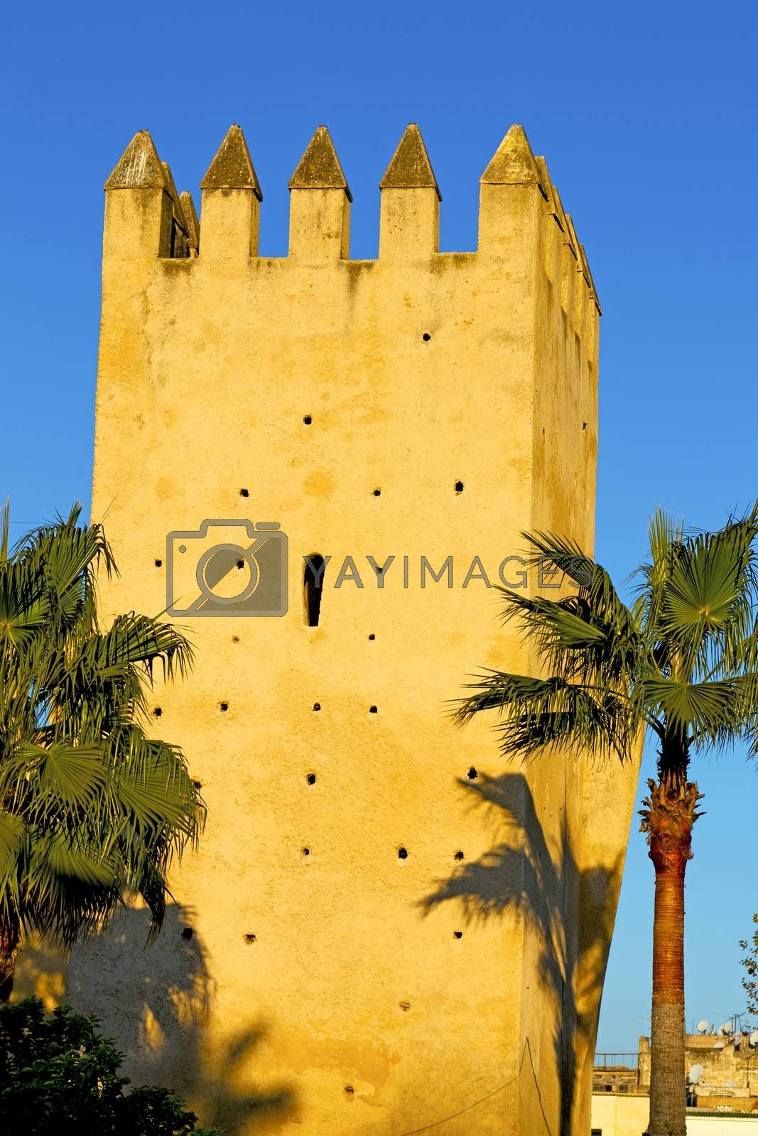 old ruin in     brown   the tower by lkpro