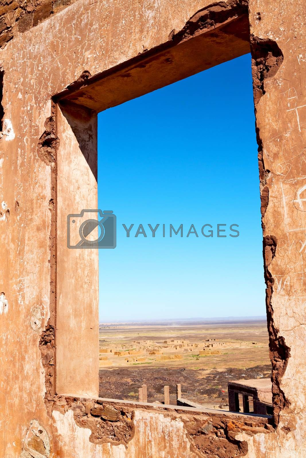 sahara      africa in morocco  palm the window by lkpro