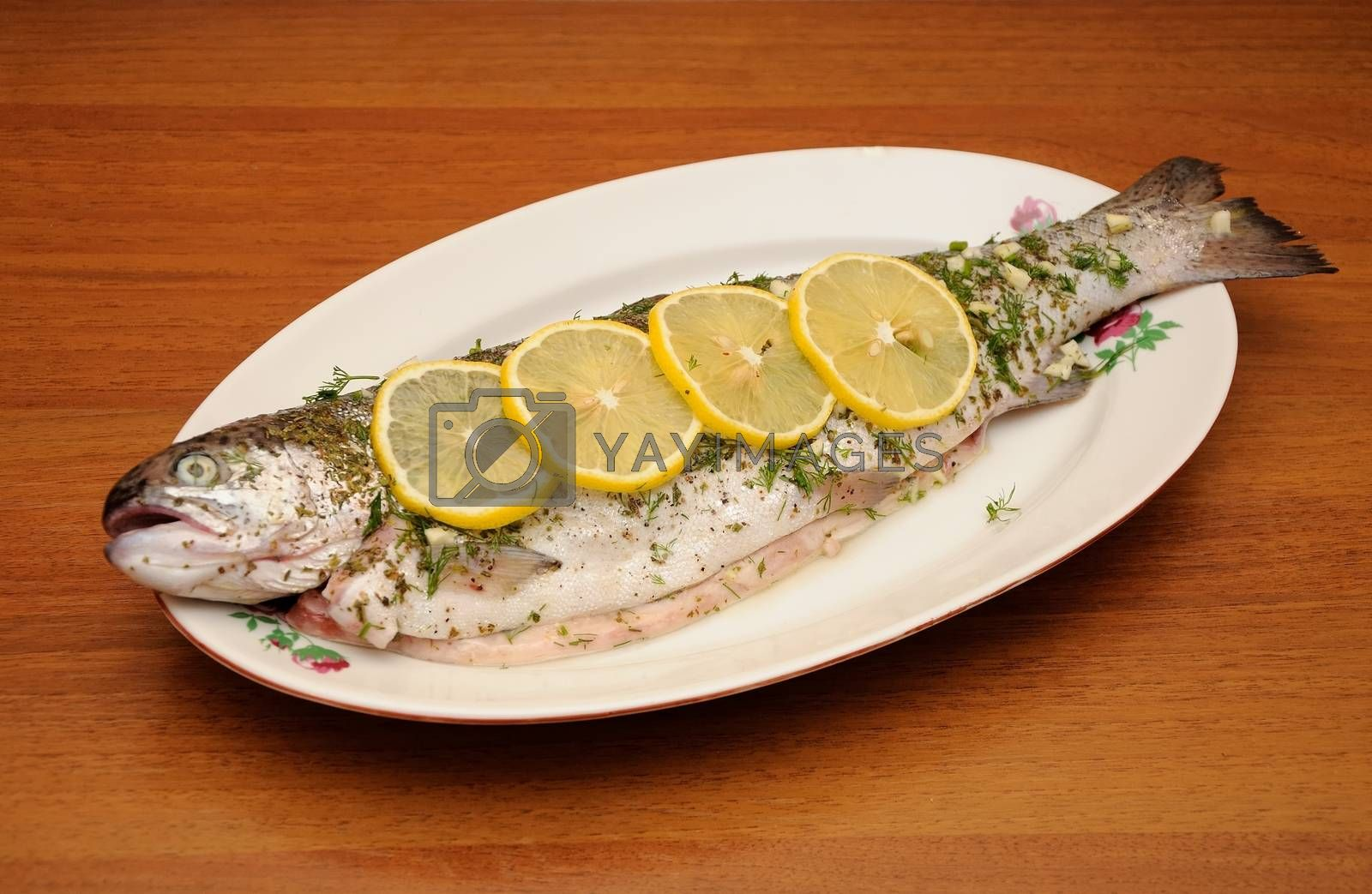 fresh rainbow trout with spices by kimmik
