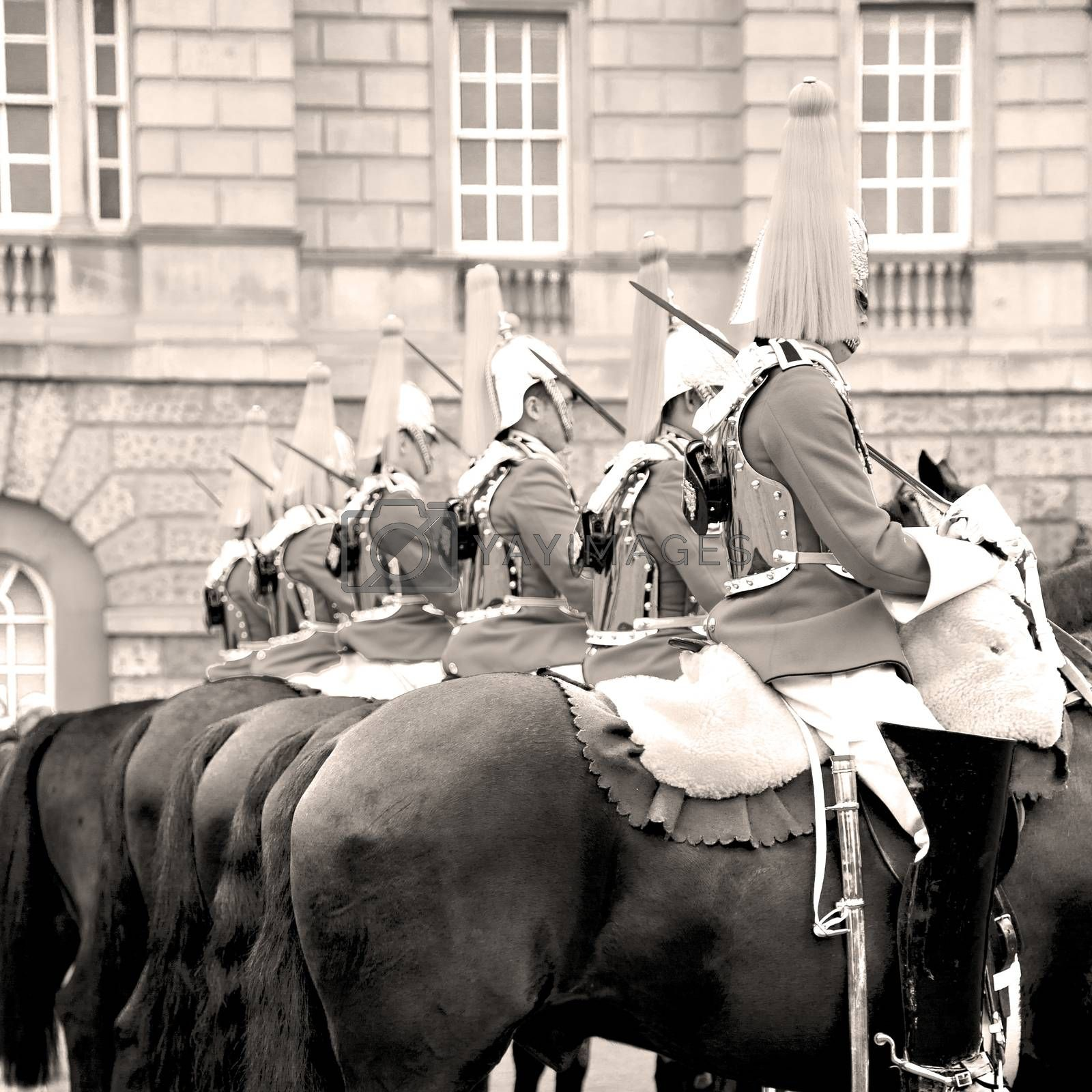 in london england horse and cavalry for  the queen by lkpro